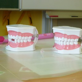 Zubní hygiena v 1. třídách