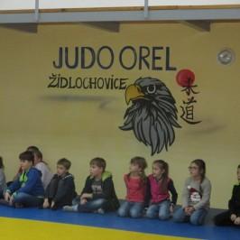 Ukázka sebeobrany – Judo